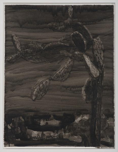 Image Inquiète (Figuier), 2013, Acrylique Sur Papier Encadrée Sous Verre, 67 X 52 Cm (26 X 20 In)