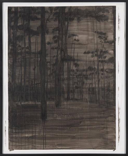 Image Inquiète (Sous Bois), 2012, Acrylique Sur Papier Encadrée Sous Verre, 159 X 132 Cm (63 X 52 In)