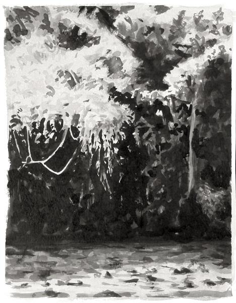 Les Lianes, 2017, Encre De Chine Sur Papier, 32 X 25 Cm (13 X 10 In)